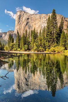 El Capitan weerspiegeld in de Merced River, Yosemite National Park, Californië, VS. van Markus Lange