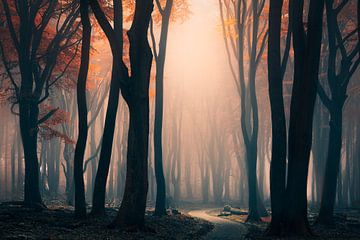 Het rode bos van