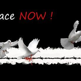Peace now van Jan Wiersma