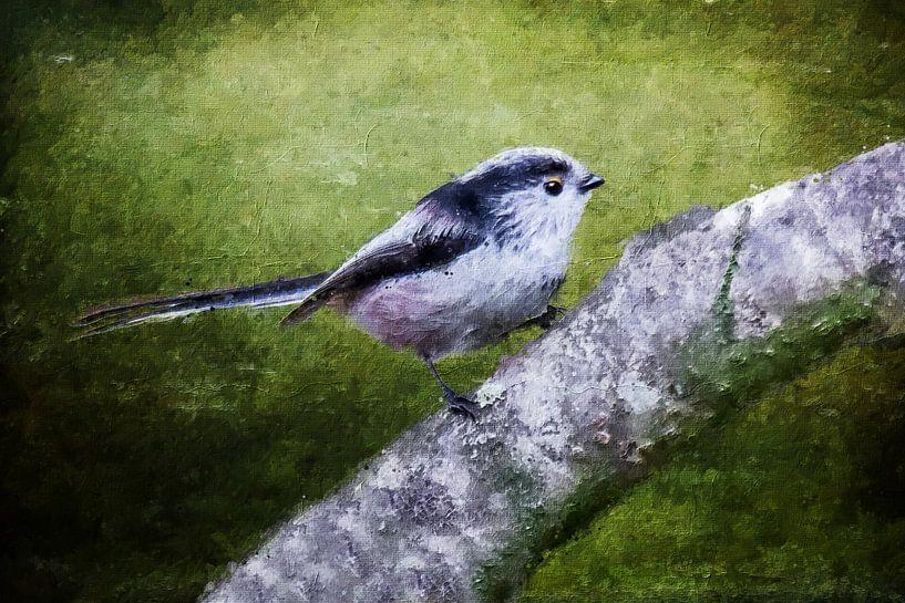 Die Langschwanzmeise (Gemälde) von Art by Jeronimo