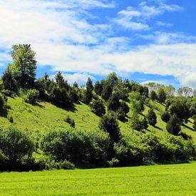 Wiesenland von fotoping