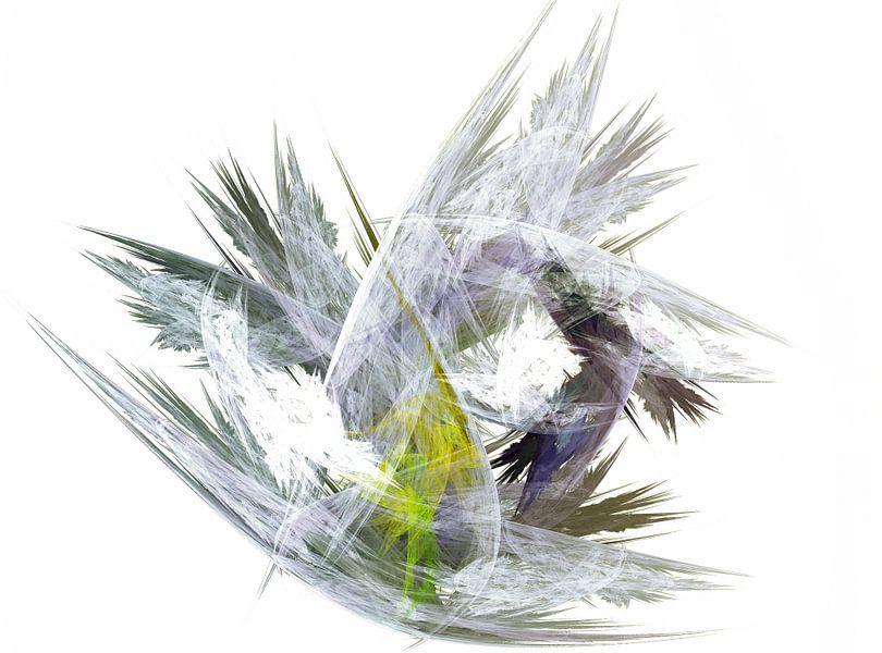 Kristal van Harry Stok