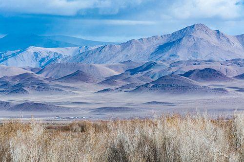 Bergen in Mongolie