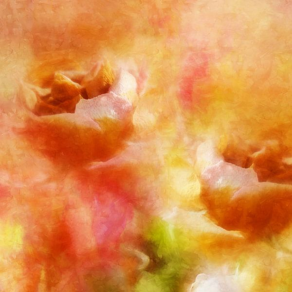 roses 2020 von Andreas Wemmje
