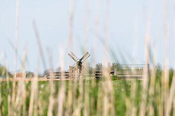 Hallo polder van Nederland! van As Janson