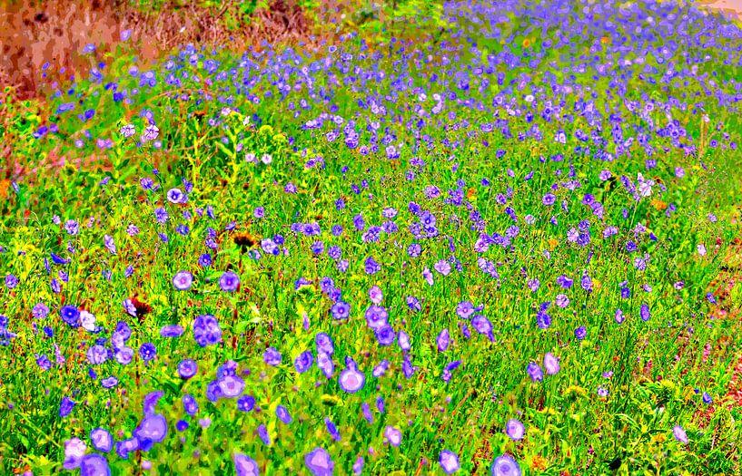 Blumenwiese von Leopold Brix