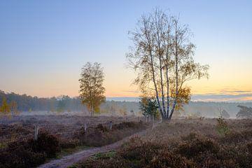 Sonnenaufgang Der Deutsche von Johan Vanbockryck