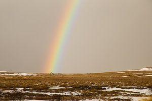 Kleurrijke regenboog in IJsland