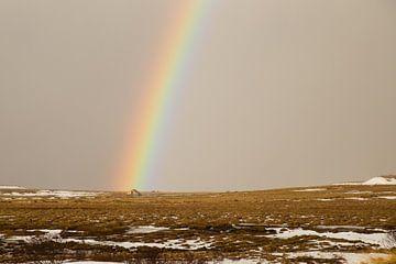 Kleurrijke regenboog in IJsland van Renske Breur