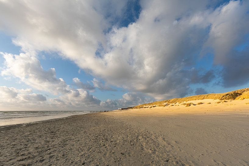 Zon op de Amelandse duinen van Ron Buist
