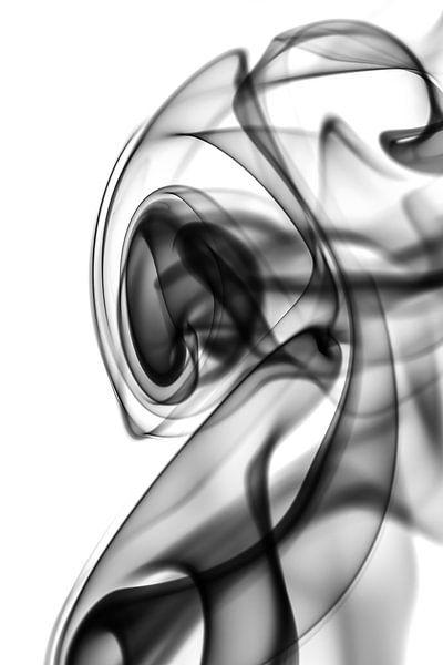Black and White Smoke van Robert Wiggers