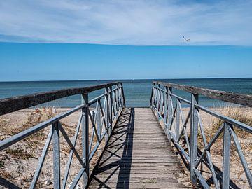 Brücke zum Strand an der Ostsee von Animaflora PicsStock