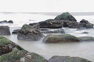 Stromend water von Hans Wolters