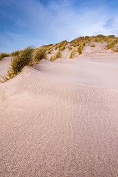 Maasvlakte 24 van Deshamer