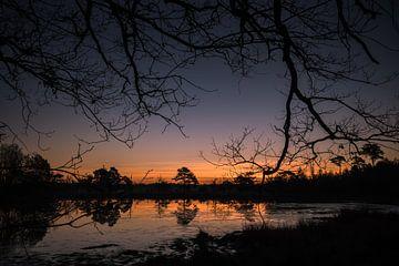 zonsopkomst door de takken von Arjan Stunnenberg