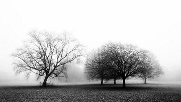 Landschap in de mist. van Karin Stuurman