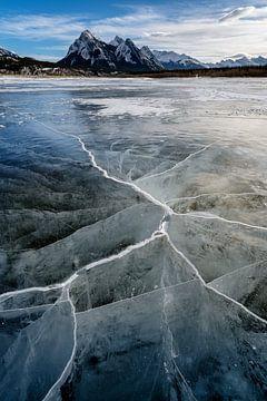 Abraham Lake van