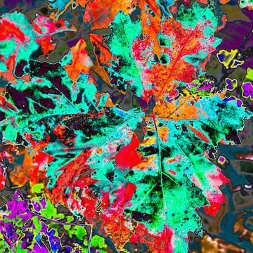 Kleurrijke herfst van Freddy Hoevers