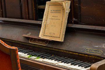Play the piano - Schubert van Lieselotte Stienstra