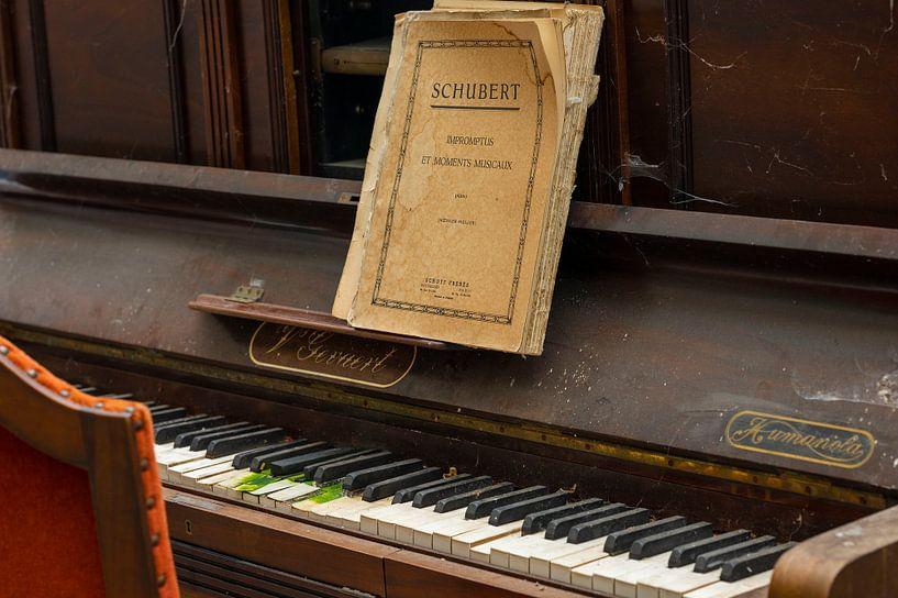 Klavier spielen - Schubert von Lieselotte Stienstra