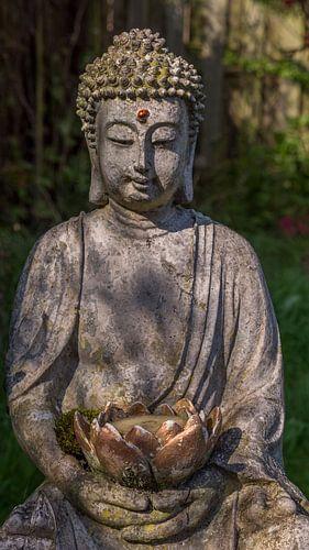 Thai Buddha met lieveheersbeestje