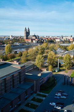 Magdeburger Dom an der Elbe bei Magdeburg von Heiko Kueverling