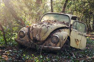 VW kever in het bos