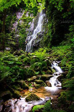 Burgbach waterval in het Zwarte Woud van Fotos by Jan Wehnert