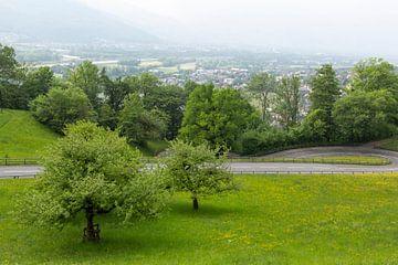 Eine Landschaft in Liechtenstein von Joy Mennings