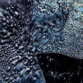 Abstracte regenboog vis van Nanda Bussers
