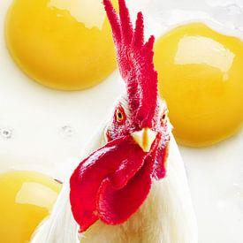 De kip of het ei sur Gonnie van Hove