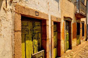 Green Doors / Portugal van Sabrina Varao Carreiro