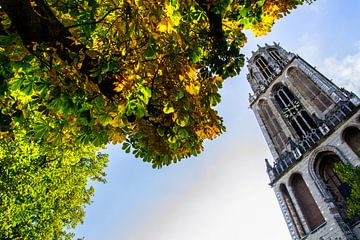 Een zonnige herfstdag op het Utrechtse Domplein. van Margreet van Beusichem