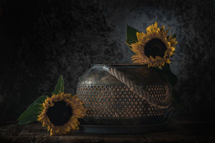 Stilleven  Zonnebloemen van Steven Dijkshoorn