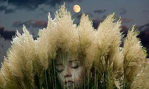 slapend vrouw in het natuur-sleeping woman in nature-Schlaf Frau in der Natur- van aldino marsella