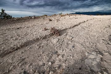 Nevada uitgestrekt woestijn landschap kale rotsachtige vlakte van Marianne van der Zee