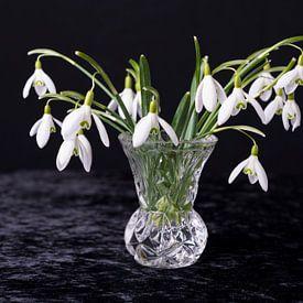 Stilleven bloemen Stilllive Flowers van Coby Zwartbol