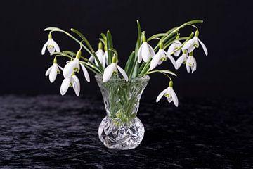 Stilleven bloemen Stilllive Flowers sur Coby Zwartbol