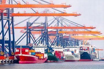Containerschepen in de haven van Rotterdam bij de terminal van Sjoerd van der Wal