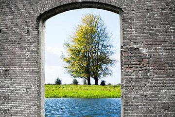 Look through van Susan Hol