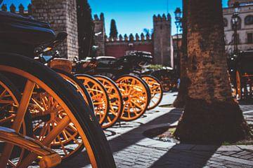 Typisch Sevilla met de Paard en wagens van Maartje Abrahams