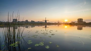 Mühlen an der Uferpromenade von Robert van der Eng