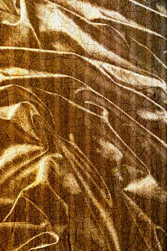 Goud fluweel van christine b-b müller