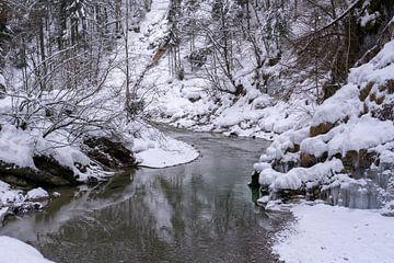 Rivier in winters bos van Barbara Brolsma