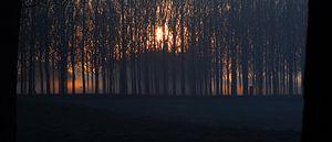 Vuur Mist