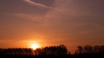 De zon komt op boven de bomen van Freya Clauwaert