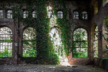 Room for light van Inge Wiedijk