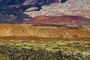 Abstract landschap op Tenerife van