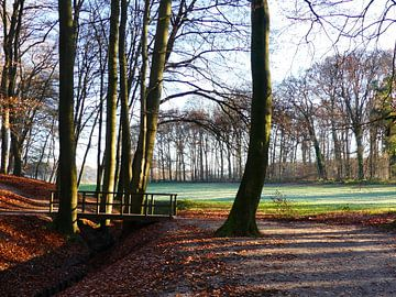 Landgoed Warnsborn in de winter von Petra Dielman