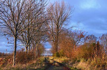 Herbstweg von Rolf Pötsch